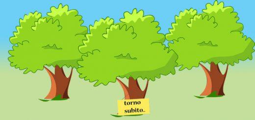 alberi stilizzati